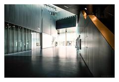 CentraleSupélec - bâtiment Bouygues : la grande diagonale (hugonoulin) Tags: parissaclay science école universitéparissaclay reflet campus architecture vitre béton lumière recherche moderne géométrique escalier gifsuryvette pilier métal