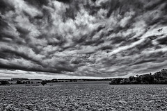 There's some weather about......... (David Feuerhelm) Tags: field fields wideangle bw blackandwhite noiretblanc schwarzundweiss negroyblanco woods hills countryside suffolk uk england clouds nikon d750 1635mmf4 silverefex