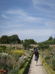 Mariëlle, Cambridgeshire 2018: Walking away (mdiepraam (30 mln views!)) Tags: cambridgeshire 2018 wimpoleestate nationaltrust marielle portrait pretty gorgeous attractive mature fiftysomething brunette woman lady milf elegant classy hat skirt scarf garden flowers