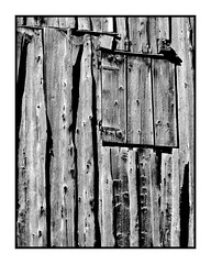 closed... (geraldkoenigsohn) Tags: rough blackandwhite manuallens vintagelens canonfd50mm14 fujixt1 shapes structure wood minimal detail bw bnw