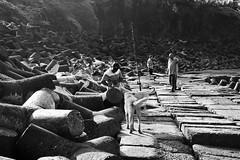 Goa Vignette Lazy fishermen (Sudhir i in the sky :)) Tags: lazydays fishermen anjuna goa beach