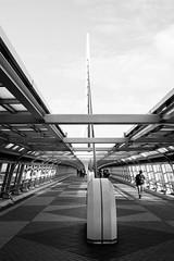 bridge, Odaiba, Tokyo, Japan (Plan R) Tags: bridge blackandwhite odaiba tokyo leica m 240 summilux 35mm