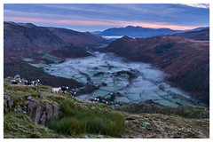 Early Morning over Borrowdale, The Lake District (dandraw) Tags: borrowdale rosthwaite skiddaw derwentwater catbells sheep frost outdoors mountains thelakes thelakedistrict cumbria fog sky clouds atmospheric sunrise trees woodland landscape fuji fujifilm xt3
