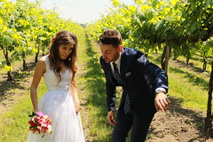 Paula & Daniel (marti.labruna) Tags: married wedding wed couple marriedcouple justmarried bride groom brideandgroom happiness fun tenderness vineyard weddingdress weddingday weddinggown bloopers