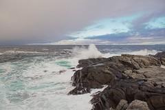 Rundes Langenes -|- Runde Island cliffs (erlingsi) Tags: klipper cliffs runde rundeisland sunnmøre nature bølger waves sea rough farwest island europäischesnordmeer