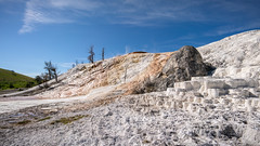 Mammoth Hot Springs 9710 (Morten Kirk) Tags: mortenkirk morten kirk yellowstone national park wyoming usa 2018 ynp nature landscape sony a7rii a7r ii sonya7rii ilce7rm2 mammoth hot springs voigtländer voigtlander 15mm f45 super wide heliar aspherical iii 15mmf45superwideheliarasphericaliii