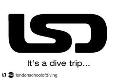 Competition time! Follow us, mention @londonschoolofdiving with #itsadivetrip in your posts to be in with a chance to win weekly/monthly prizes! #scuba #padi #lsd #london #scubadiving #passonplastic #oceanhero #competition #prizes #win @lsdscuba @7theharb (lsdscuba) Tags: ifttt instagram scuba lsd