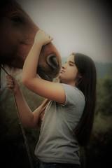 Portrait of a girl and her beloved horse II (alestaleiro) Tags: portrait retrato girl horse caballo amor hug abrazo vintage oldfashioned cavalo cavallo equino animal doçura soft suave alestaleiro
