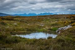 Scene on the bog road near Lettermore, Connemara. (Velmerc) Tags: bog landscape ireland west connemara outdoors sky stones mountains heather grasses wildatlanticway