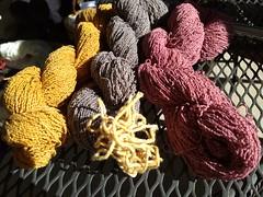 2018-10-11 10.54.50 (tdpigg) Tags: natural dye ewg study group