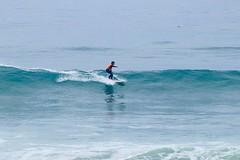 IMG_6316 (palbritton) Tags: surf surfing surfer singlefin longboard longboardsurfing surfcontest