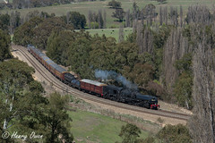 Cruising Through (Henry's Railway Gallery) Tags: 6029 ad60class garratt steamlocomotive steamtrain heritagetrain thnsw transportheritagensw passengertrain 6s65 tarana