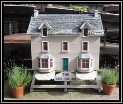 The Bee House. Chain Bridge (M E For Bees (Was Margaret Edge The Bee Girl)) Tags: chainbridgehoneyfarm northumberland model house sun summer plants pots windows canon