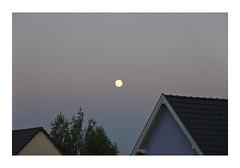 _JP13312 (Jordane Prestrot) Tags: ♋ jordaneprestrot mooninjune moon lune luna ciel sky cielo sunset crépuscule crepúsculo