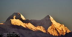 Nanda Devi ( Closer View ) (Kapaliadiyar) Tags: kapaliadiyar nandadevi nandadevieast nandakot sunandadevi kumaon uttarakhand himalayanpeaks chaukori