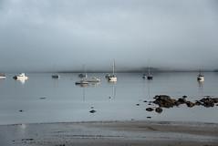 So Still (Jocey K) Tags: newzealand nikond750 akaora bankspeninsula canterbury hills sea akaroaharbour boats rocks scene landscape seascape reflections sky mist clouds