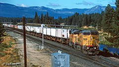 From the Forest to the Desert (C.P. Kirkie) Tags: unionpacific up westernpacific wp featherrivercanyon california northerncalifornia ge generalelectric intermodal trains railroads freighttrain forest sierranevadamountains