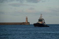 South Shields - Photocredit Neil King-48 (Neilfatea) Tags: southshields northeast lighthouse workingboats tugs rivertyne water northsea seawall