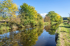SJ1_1646 - Near East Marton (SWJuk) Tags: skipton england unitedkingdom swjuk uk gb britain yorkshire northyorkshire eastmarton canal leedsliverpoolcanal water flat calm reflections vanishingpoint towpath bluesky trees light sunlight 2018 sep2018 autumn landscape waterscape countryside nikon d7200 nikond7200 18300mm rawnef lightroomclassiccc