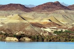 Lake Havasu (Bird Aficionado Stan) Tags: lakehavasu lakehavasucity