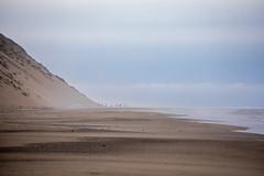 Beach Zombies (gseloff) Tags: landscape seascape beach sand dune people mist clouds sky water ocean atlantic capecodnationalseashore truro massachusetts ballstonbeach gseloff