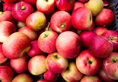 Apples 1 (S's images) Tags: west dean garden autumn harvest apples kitchen fruit orchard red