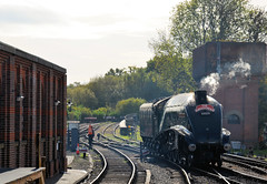 The Aberdonian in Sussex (davids pix) Tags: 60009 union south africa gresley a4 lner preserved steam locomotive streamlined pacific aberdonian passenger train sheffield park bluebell railway 2018 12102018