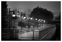 _DSC8248-Mr (gillesporlier) Tags: street lumiere light mist brume morning nikon bnw blackandwhite noiretblanc banc bench fenced cloture monochrome d750