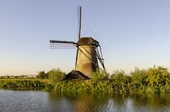 Windmill at Kinderdijk (rschnaible) Tags: kinderdijk netherlands work production water control windmills power pump reeds landscape house home architecture