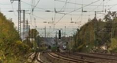 05_2018_11_01_Bochum_Ehrenfeld_001_150_DB_mit_Sonderzug_und_0010_019_CBB ➡️ Witten_ABRN ➡️ Essen (ruhrpott.sprinter) Tags: ruhrpott sprinter deutschland germany allmangne nrw ruhrgebiet gelsenkirchen lokomotive locomotives eisenbahn railroad rail zug train reisezug passenger güter cargo freight fret bochum ehrenfeld db abrn abellio cbb 001 0010 0427 0826 6101 6146 ic rb re sonderzug dampf dampflok logo outdoor natur