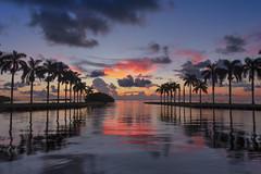Sunrise at the Deering Estate, Miami (dubrick321) Tags: deeringestate landscape landscapes sunrise sunriseatdeeringestate floridalandscape palmtrees charlesdeeringestate