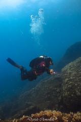IMG_1452 (davide.clementelli) Tags: diving dive dives padi immersione immersioni ampportofino portofino liguria friends amici underwater underwaterlife sottacqua