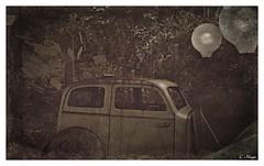 Junk (Loegan Magic) Tags: secondlife elysion auto car lights book pages wind woods trees trash junk blackandwhite