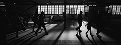 Manly Arrivals (@fotodudenz) Tags: hasselblad xpan film rangefinder 30mm ultra wide angle panorama panoramic 2018 35mm sydney nsw new south wales australia ilford xp2 super street photography manly ferry terminal