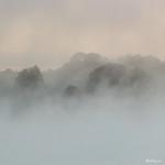 Autumn Mist - Brume d'automne thumbnail