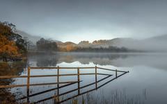 Reveal (raymond_carruthers) Tags: loch autumn morning sunrise scotland lochachray trossachs lomondtrossachsnationalpark reflection reflections mist trees scottish misty lomondtrossachs fence