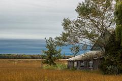 Country landscape - Paysage bucolique (soniamarmen) Tags: landscape field dark sky trees barn old