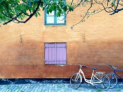 Nyboder Heritage Site (stardex) Tags: nyboder bicycle window tree branches leaves copenhagen denmark heritage building architecture
