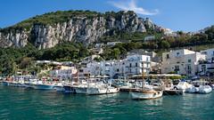 Port of Capri (Sworldguy) Tags: boats capri europe island italia seaside house architecture travelphotography scenic harbour town waterscape cliffs yachts tourism coast bay hillside sonya73 landscape summer isleofcapri bayofnaples marinagrande naples sorrento