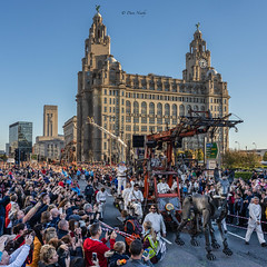 #GiantsLiverpool-2018 (davenewby123) Tags: giantsliverpool2018 liverpool giants cities davenewby2 spectacularshow road people statue building city tower crowd sky giantspectacle liverpoolgiants giantsliverpool tree royalliverbuilding
