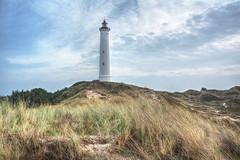 Urlaub in Dänemark, Lyngvig Fyr von den Dünen aus gesehen! (baerchen57) Tags: urlaub strand wasser nordsee steilküste sand wolken lyngvigfyr leuchtturm