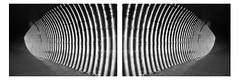 réacteur (David Ian Ross) Tags: diptych miroir reflection reversed mirrored sunlight shadow symmetry symétrique lines monochrome réacteur fusion reactor