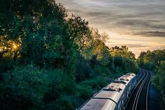 Railway-0271.jpg (Giedrius M.) Tags: london nikon railway clouds tree tooting train sunrise