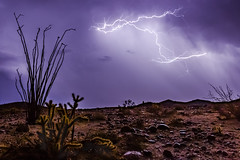 1.21 Gigawatts - Anza-Borrego Desert - October 12, 2018 (slworking2) Tags: julian california unitedstates us lightning thunderstorm desert ocotillo cholla weather anzaborrego anzaborregodesertstatepark