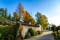 Piemonte - Langhe (Renzo Olivieri) Tags: piemonte langhe raflazz autunno cascina italia