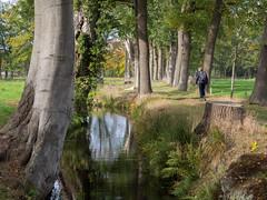 Vennebroek (Jeroen Hillenga) Tags: vennebroek drenthe landgoed netherlands nederland natuur nature natuurgebied natur park garden tuin wandelen hiking wanderer wandelaar landscape landschap cultuurlandschap boom tree trees bomen