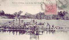 Natives washing wool in North West, Western Australia - 1912 (Aussie~mobs) Tags: vintage australia westernaustralia aborigine native indigenous washingwool 1912
