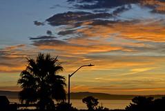 All Saints Day sunrise (3) (David McSpadden) Tags: 11118 dalycity sunrise sfbay