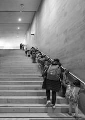 Young visitors to the Louvre / Молодые посетители Лувра /explore/2018/11/03 (dmilokt) Tags: чб bw черный белый black white город city town dmilokt nikon d750 paris париж