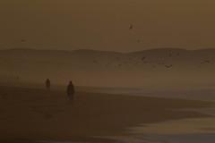 Flegetonte (gaetano.merola) Tags: seashoreline sand merola gaetano ef400 1d canon sunset morocco marocco sundown ocean seascape